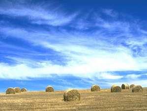 リゾートイン ノースカントリー:秋の風景