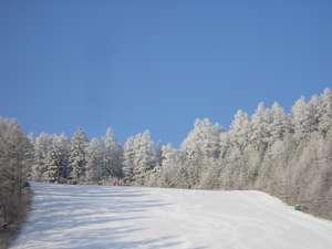小海リエックスホテル:晴天率が高いゲレンデ。浅間山や秩父連山を眺めながら楽しめます。