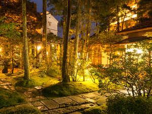 法師:夜にライトアップされる中庭。夕闇に浮かび上がる木々は幽玄さを帯び、昼とは違った美しさを感じます。