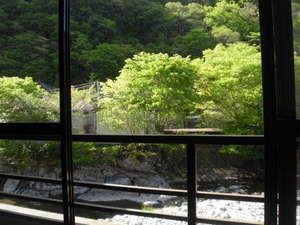 旅館 奥村宗助(大峯山 洞川温泉):輝く新緑