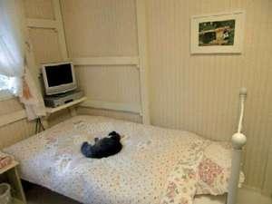 富士山健康開運猫と犬の宿ペンションブルーポピー