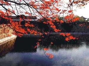 ホテル京阪 京橋 グランデ:大阪城公園は当館から歩いていける、おすすめ紅葉スポットです★(c)(公財)大阪観光局