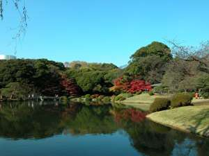 City Hotel N.U.T.S:【新宿御苑】当館より徒歩2分。東京を代表する庭園、四季折々の表情がお楽しみいただけます。
