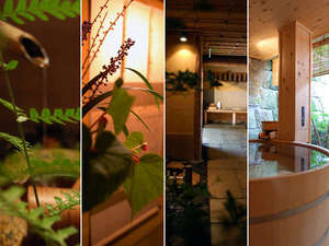 懐石宿 扇屋:日本の伝統美を受け継ぐ情緒あふれる空間