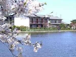 白鳥の宿 割烹旅館 ますがた荘:湖と自然に囲まれたのどかな旅館。