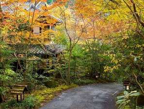旅館 山河:紅葉