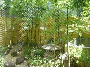 ゼロ磁場の宿 入野谷:明るい日差しが差し込む室内庭園