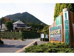 近江富士花緑公園の写真
