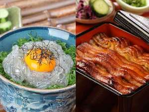 有田川温泉 鮎茶屋 ホテルサンシャイン:湯浅産『生しらす丼』と、有田産『たち重』(太刀魚蒲焼き丼)