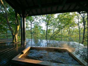 宿房 翡翠之庄~The Kingfisher resort~:客室露天風呂や内湯が付いた離れもございます。