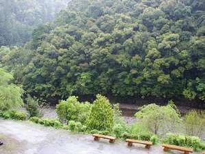 小雨の神湯川 部屋から望む