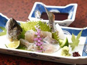 静響の宿 山水:新鮮な川魚のお造り。鮎やアマゴなど季節の魚をご賞味下さい