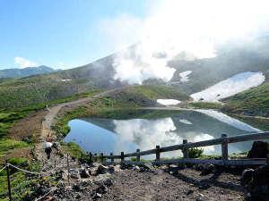 旭岳温泉 ホテルベアモンテ:夏の姿見の池