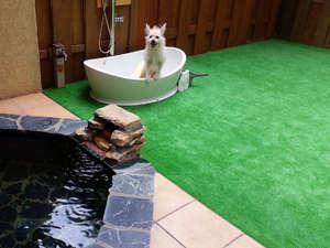 ペットと一緒全室露天付英国調ホテル石の家