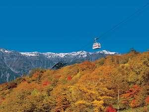 紅葉の山の上を進む♪新穂高ロープウェイ