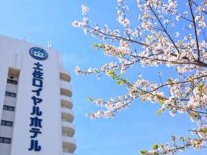 土佐ロイヤルホテル:【春のホテル外観イメージ】ホテル周辺に咲く桜の花は毎年見ごたえがあります。