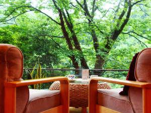 お風呂自慢の宿 翠明:ロビーの大きな窓いっぱいに広がる緑は、日頃のお疲れを癒してくれます。