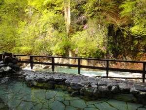 湯元 四萬館:亀の湯・露天風呂