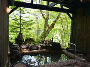 登別カルルス温泉 ホテル岩井:【露天風呂・女湯】 眺めのよい露天風呂にてゆっくりと。