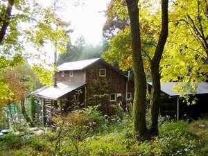 Cottage 樹樹の写真