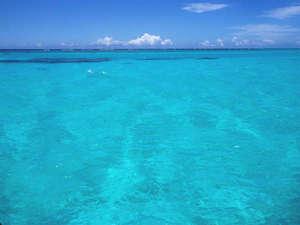 ミヤコセントラルホテル:*どこまでも続く青い海はアナタの物!癒しの時をお過し下さい。