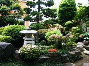 中村屋旅館:お庭