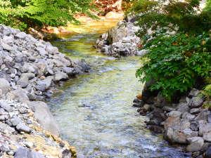 ランプの宿 青荷温泉:*【青荷川】川のせせらぎが心地よく聴こえます♪