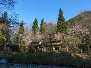 日本の宿ひだ高山 倭乃里 の写真