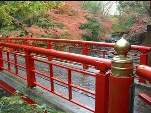 湯の宿 花小道:修善寺温泉街 桂橋 紅葉がとても美しいです。