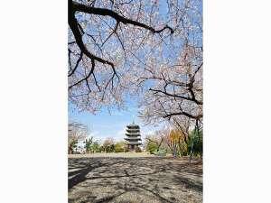 ◆香貫山 香陵台◆