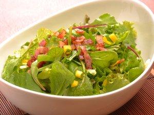 無農薬のレタスを数種類使ったサラダは野菜のパリパリ感と柔らかさのハーモニー