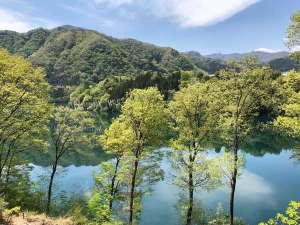 食事処から見えるエメラルドグリーン色の赤谷湖と新緑のコラボレーション