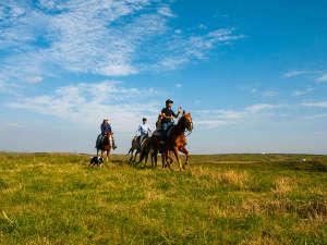 スケール感溢れるロケーションでの爽快な乗馬体験