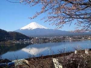 富士と湖を望む絶景宿 グリーンレイク