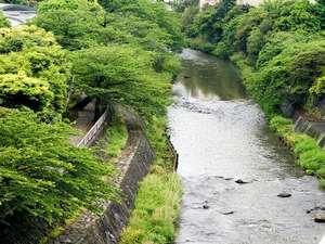 宿の前を流れる松川のせせらぎ