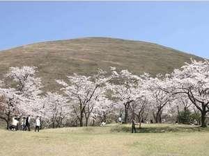 伊豆高原 山之辺の宿 桜舞 ~ohbu~