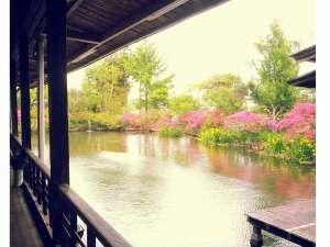 人吉温泉しらさぎ荘:熊本県平成の名水百選の湧水池を眺めながらのお食事が楽しめます