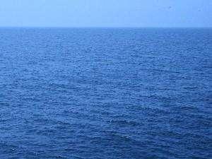 漁師の宿 清宝:窓から見える増毛の前浜 はるか地平線が望めます