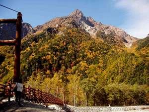 上高地 朝焼けの宿 明神館:明神岳黄葉、10月20日ころ。明神橋からは、主峰が見えません。明神館の場所、明神まで、戻って下さい。