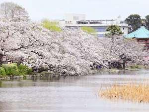 ★上野公園