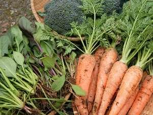 なるべく無農薬に近い新鮮なお野菜を中心にしました食事内容をご提供できればと思っております。