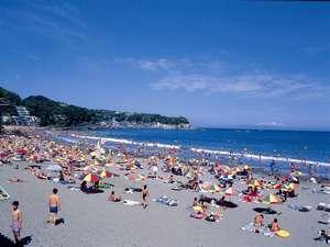 伊豆今井浜温泉 今井荘:夏本番の今井浜。ビーチは庭続きだから、水着のままどうぞ