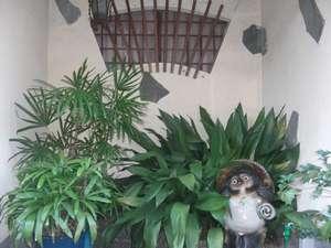 二宮旅館:家庭的な雰囲気です