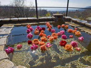バラを浮かべた露天風呂