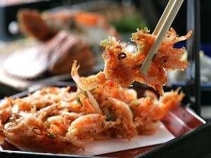 割烹旅館 西山:サクサク食感の桜海老のかき揚げ 一例