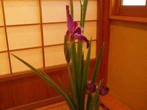 館内には季節の花たちを