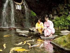 箱根湯本温泉 天成園:◆玉簾の瀧◆滝つぼには鯉。のんびり癒しの休日を。