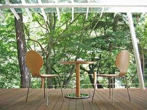 鶴屋姉妹館「森のカフェKISEKI」テラス席では、季節の移ろいを間近に感じていただけます。