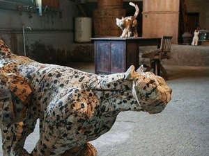 中之条町では、2年に1度の芸術祭「ビエンナーレ」が開催されます!