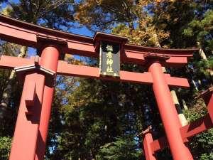 弥彦温泉 四季の宿 みのや:越後随一のパワースポット【彌彦神社の一の鳥居】